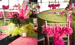 Decorar Organizar Quinceanera